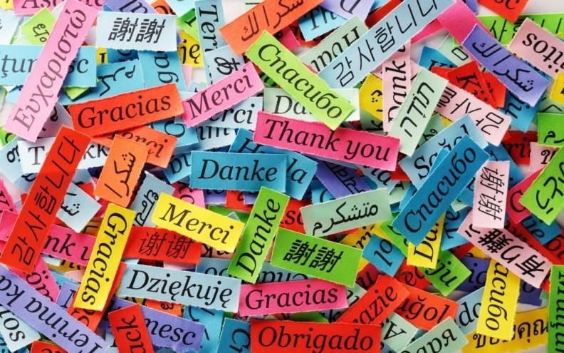 Erasmus e il valore del multilinguismo